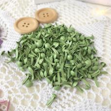 Брадсы зелёные, 10 шт.