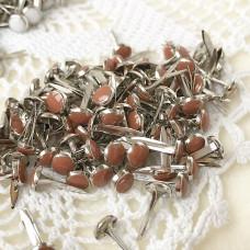 Брадсы эмалевые, цвет коричневый, 5 шт.