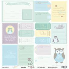 Лист односторонней бумаги 30x30 см. от Scrapmir Baby Boy Карточки