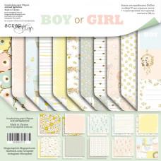 Набор двусторонней бумаги 20 х 20 см. от Scrapmir Boy or Girl 11 листов