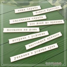 """Чипборд """"Надписи для дембельского альбома 3"""", 8 элементов"""