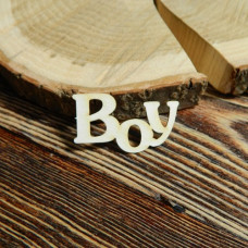 Надпись Boy