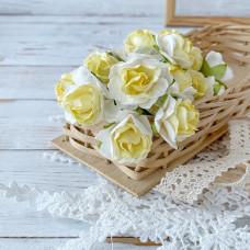 Роза кудрявая, 3 см., белая с жёлтой серединой