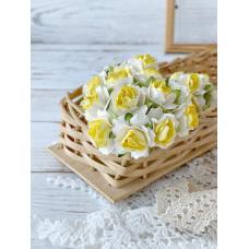 Роза кудрявая 2 см., белая с жёлтой серединой