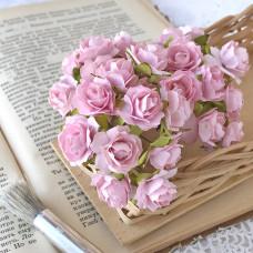 Роза кудрявая, 2 см., розово-персиковый цвет