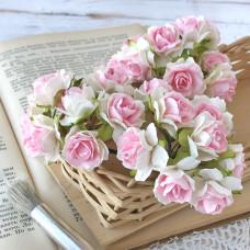 Роза кудрявая, 3 см.,  белая с розовой серединой