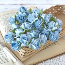 Роза кудрявая, 3 см., голубая