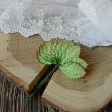 Листья розы средние, зелёные, 10 штук