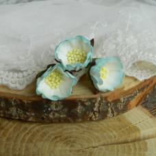 Цветок шиповника, цвет голубой/белый