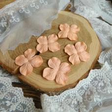 Гортензии 5 см., цвет персиковый, 5 штук