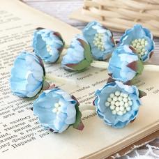 Цветок шиповника, цвет голубой