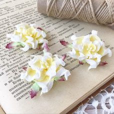 Цветок гардении, цвет белый/жёлтый