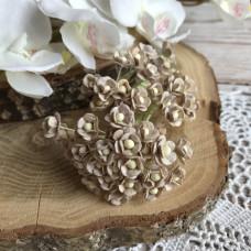 Цветок вишни мини, 1 см., кофе с молоком