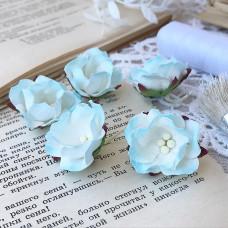 Цветок яблони, голубой/белый