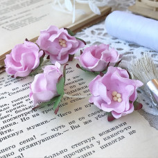 Цветок яблони, розовый