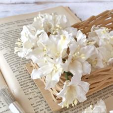Цветок лилии, белый цвет