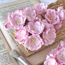 Цветок магнолии, бледно-розовый цвет