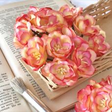 Цветок магнолии, розовый/жёлтый цвет