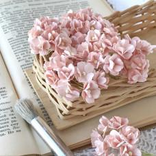 Цветок вишни средний, розово-персиковый светлый цвет